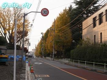 20111207kannpo-3.jpg