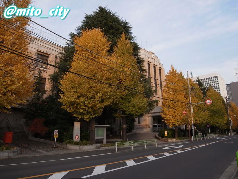 20111207kannpo-2.jpg